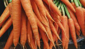 Legături de morcovi proaspăt culeși