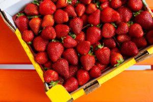 Căpșuni modificate genetic
