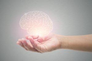 Reprezentare grafică a creierului uman