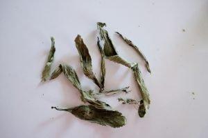 Frunze uscate de stevia